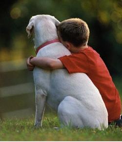 garoto e o cãozinho